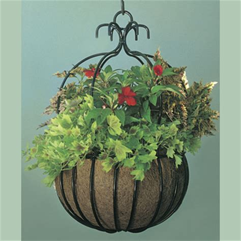 decorative hanging planters decorative hanging baskets kinsman garden