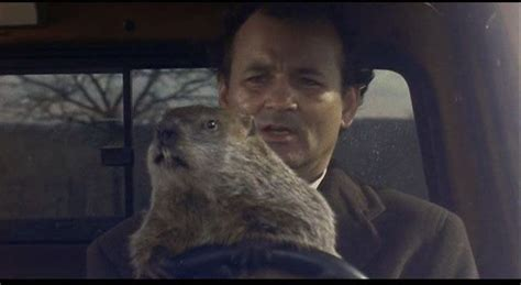 groundhog day driving quot don t drive angry quot drive angry
