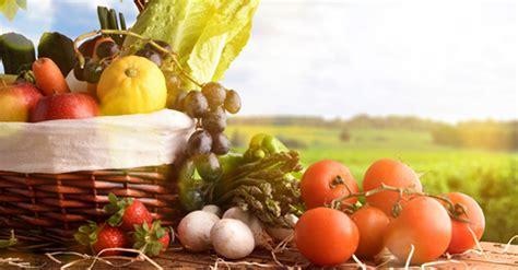 alimentazione corretta per il fegato consigli per una corretta alimentazione e benessere
