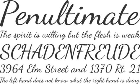 Wedding Font Openoffice by Script Ot Font Free By Impallari Type 187 Font Squirrel