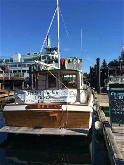 at friday harbor read friday harbor cruises all you need to before you go
