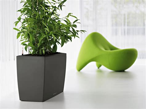 Sub Irrigation Planters by Lechuza Sub Irrigation Planters With Modern Design Digsdigs