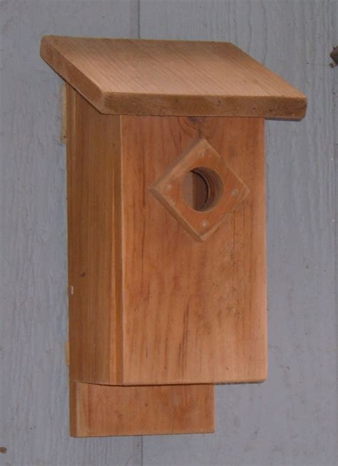 choose   birdhouse attracting birds