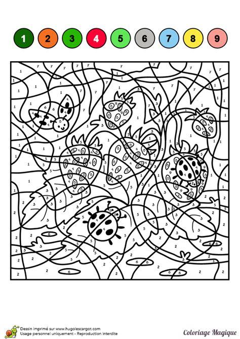 Dessin 224 Colorier D Un Coloriage Magique Cm1 Coccinelles