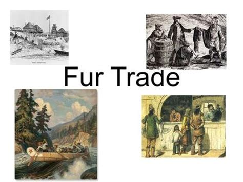fur trade worksheets all worksheets 187 fur trade worksheets printable worksheets guide for children and parents