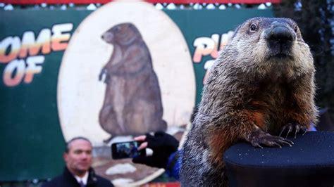 groundhog day celebration punxsutawney phil might execution for wrong weather