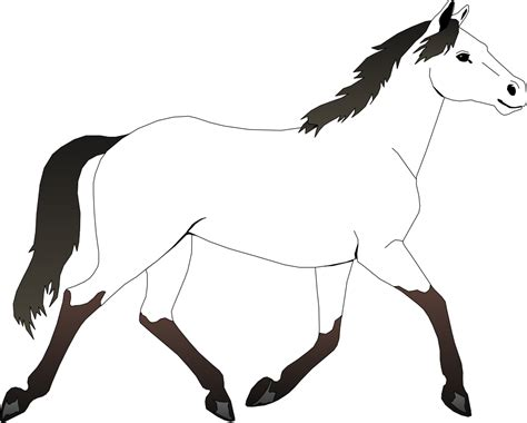black and white coloring pages of horses best horse clipart black and white 28967 clipartion com