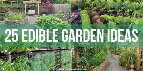 edible garden ideas remodelaholic 25 edible garden ideas