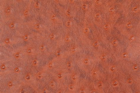 Vinyl Ostrich Upholstery Fabric - ostrich embossed vinyl upholstery fabric in saddle