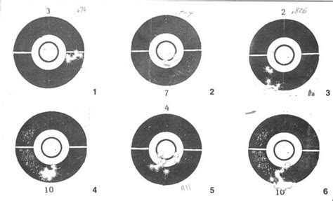 winchester printable targets make an accurate 22 semi auto gun digest
