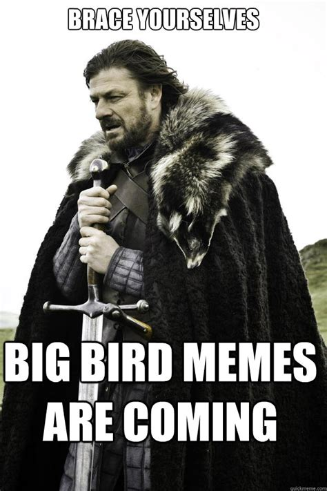 brace yourselves big bird memes are coming winter is