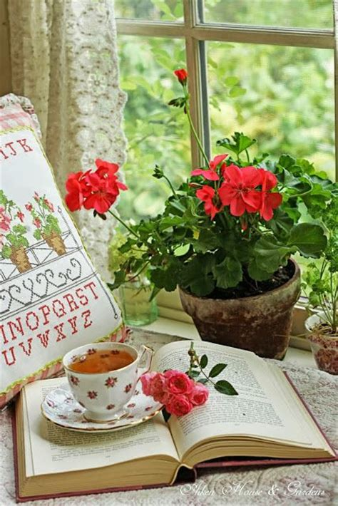 17 best images about flowers geraniums on pinterest watercolors window boxes and geranium