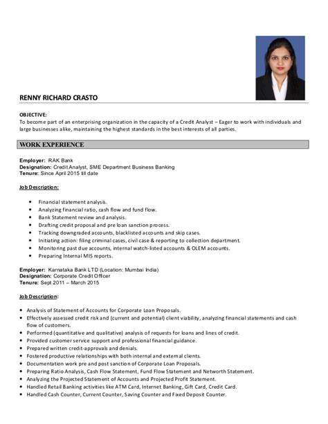 Sle Resume Business Analyst Credit Cards credit analyst resume