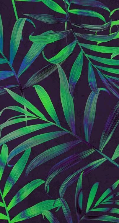 themes tumblr tropical tropical background tumblr