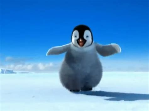 Happy Feet Meme - feet gif find share on giphy