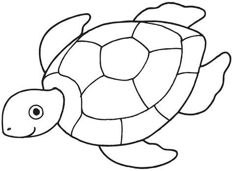 turtles outline turtle outline clip clipart best