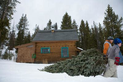 christmas tree permits kamas utah best 28 utah tree permits iron county today