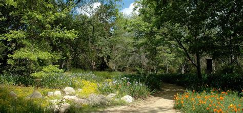 Claremont Botanical Garden Rancho Santa Botanic Garden Fasci Garden