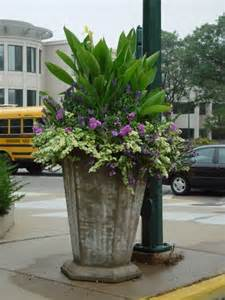 Large Planter Ideas by 25 Best Ideas About Large Flower Pots On