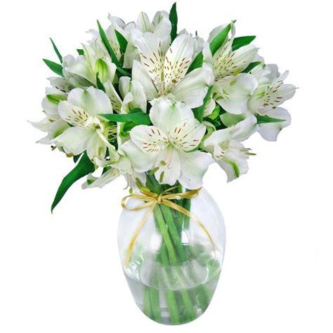 imagenes flores astromelias envie uma linda mensagem no rosh hashan 225