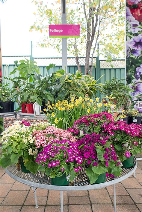 flower shops in garden grove garden grove flowers garden grove flower delivery
