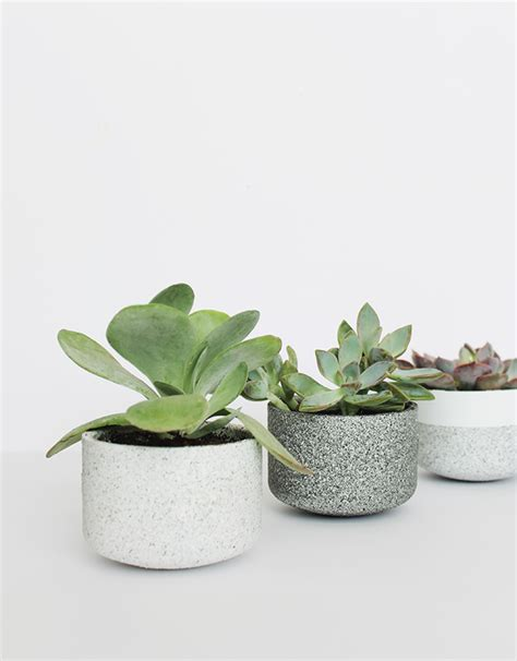 Mini Planters by The Ultimate Diy Planter Collection Crafted