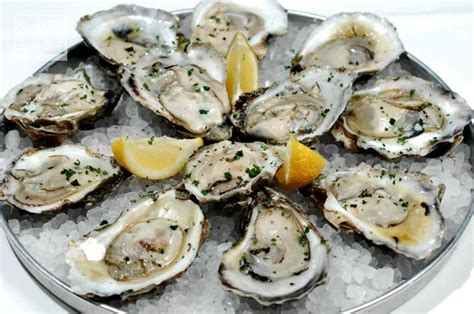 Oyster Health health benefits of oysters thrutcher
