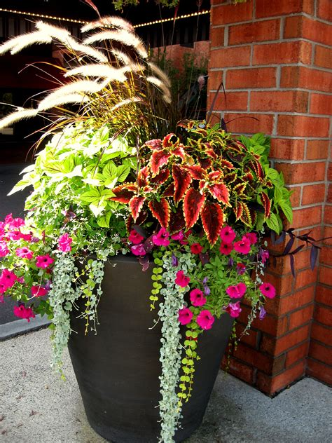 Porch Flower Planters by 2 Gorgeous Outdoor Planter Florida Patio And Garden
