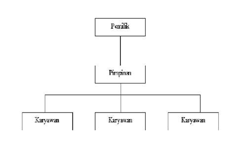 membuat struktur organisasi garis christ bian tugas riset akuntansi