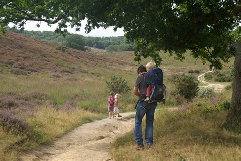 wandlen kinder wandelen met kinderen op de posbank 5 4 km