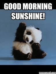 Cute Good Morning Meme - cute good morning sunshine meme images funny cute silly good morning memes pinterest meme