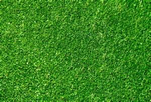 grass pattern website grass textured wallpaper 2017 grasscloth wallpaper