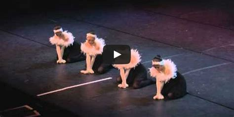 dance of the swans these four little swans from japan will bring a smile to