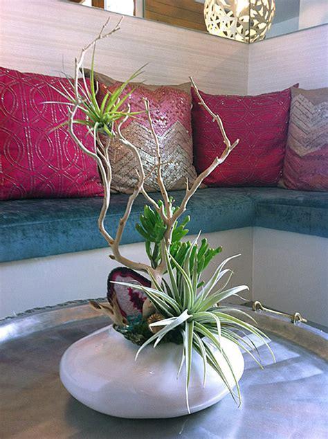 Floral Arrangement Ideas 22 Deko Ideen Mit Tillandsien Welche Beh 228 Lter F 252 R Die Airplants