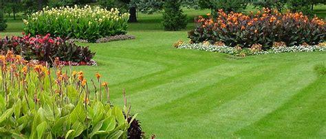 spring landscaping tips spring landscaping tips roma landscape design