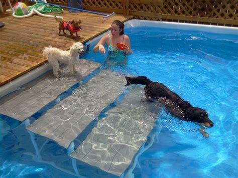 backyard dog pool 25 best ideas about pool steps on pinterest above