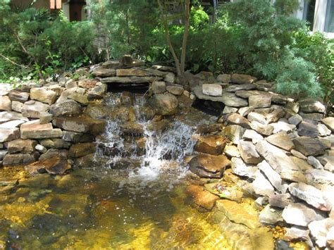 Landscape Supply Jackson Ms 43 Best Images About Goldfish Pond On Backyard