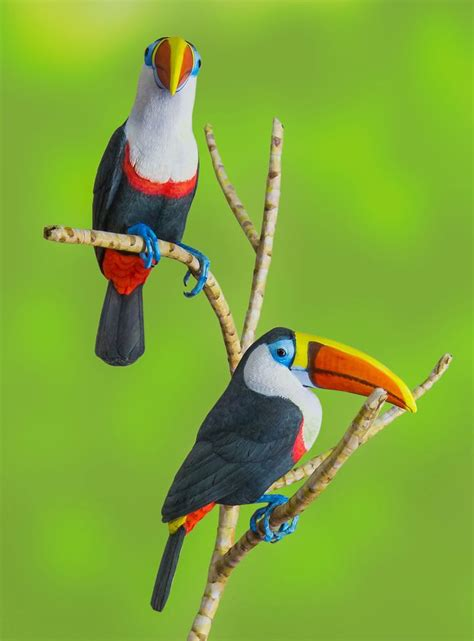 Polly George Does Birds by 106 Best Birds Of Paradise Parrots Toucans Images On