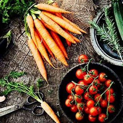 alimentazione vegano dieta vegan e alimentazione i principi dell essere vegan
