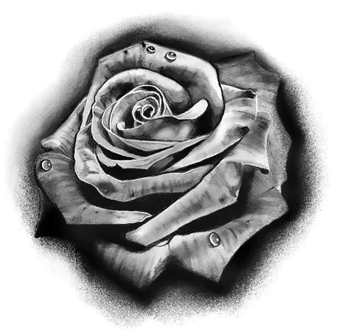 black and grey rose tattoo meaning black and gray design