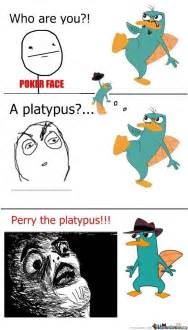 Perry The Platypus Meme - perry the platypus by bulinaaa meme center