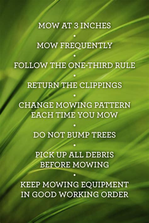 Grass Memes - no mow lawn memes