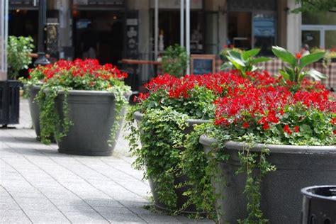 vasi in plastica per fiori vasi per fiori vasi da giardino tipi di vasi per fiori