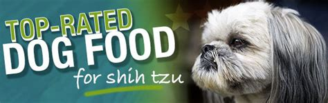 what is shih tzu favorite food what is the best food for a shih tzu
