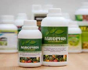 Pupuk Majemuk Mkp jenis pupuk yang mengandung fosfor tinggi dan manfaatnya
