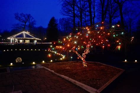 10 Reasons To Visit Potter Park Zoo In Lansing Michigan Potter Park Zoo Lights