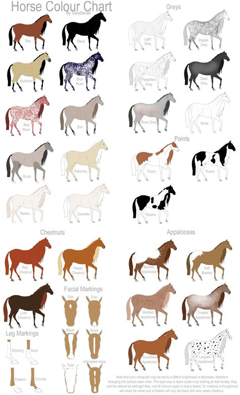 color of horses miniature show colour chart by gaurdianax