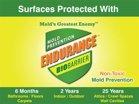 mold service provider dashboard guaranteed mold prevention