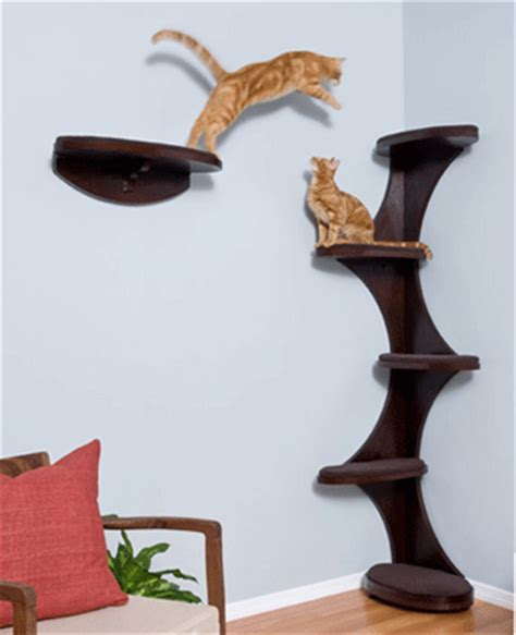 modern cat furniture design ideas wall mounted and heated