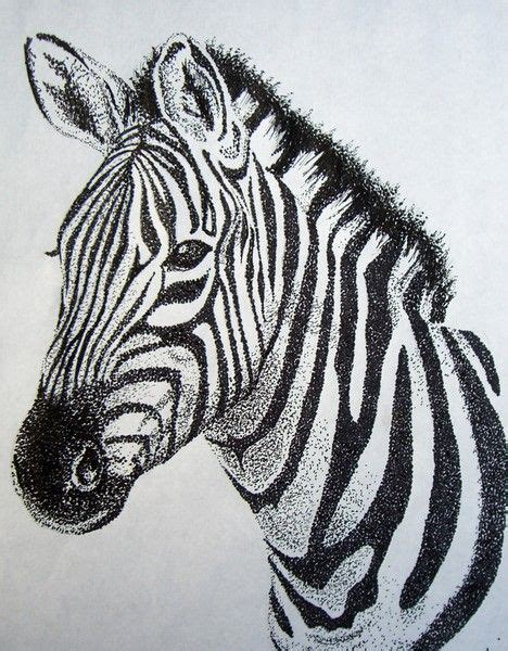 zebra tattoo pen 17 best images about zebras on pinterest africa